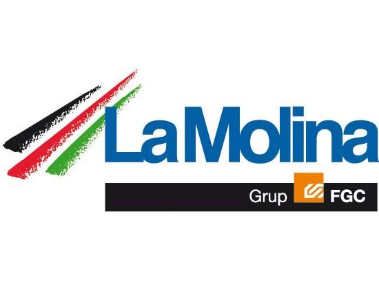 Logo-molina